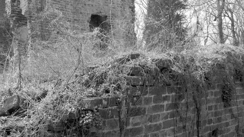 The Ruins Of Rosewell Rescued From The Cruel Hands Of